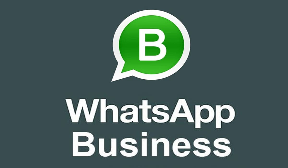 WhatsApp business anteprima